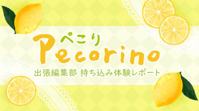 【ぺこり-Pecorino-】COMIC CITY 出張編集部持ち込み体験レポート No.14