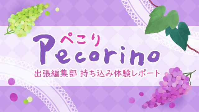 【ぺこり-Pecorino-】COMIC CITY 出張編集部持ち込み体験レポート No.19